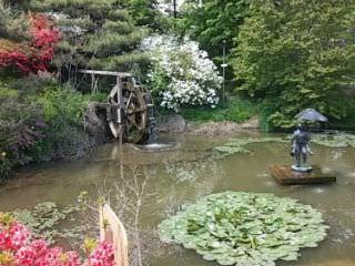 トゥルコッ樹木園