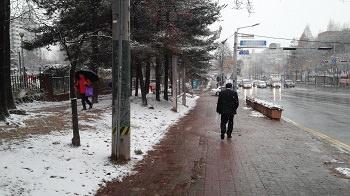 極寒の雪道.jpg